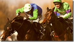 Mon Mome - 2009 Gand National Winner