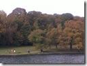 Roundhay Park Lake